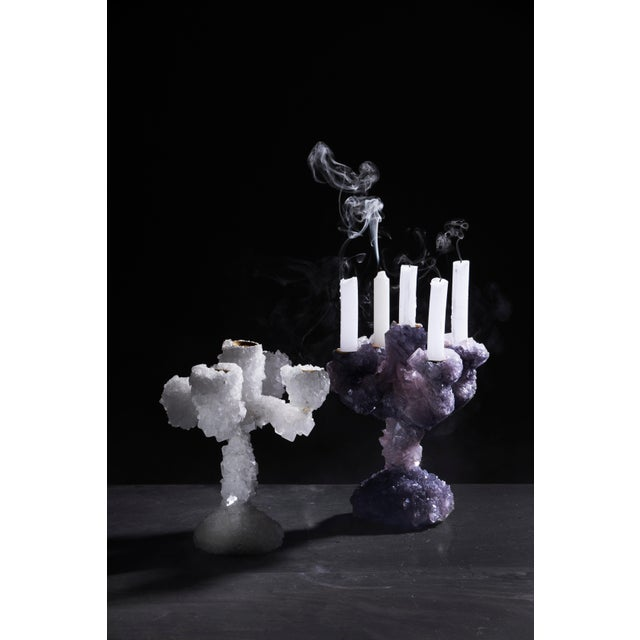 Mark Sturkenboom Pair of Crystal Overgrown Candelabras, Mark Sturkenboom For Sale - Image 4 of 5
