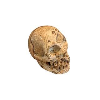 Stone Skull For Sale