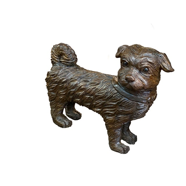 19th Century French Carved Dog With Glass Eyes For Sale In Dallas - Image 6 of 6