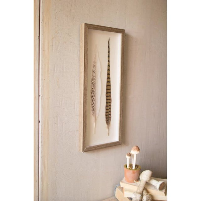 Two Feathers Framed Under Glass made by Kalalou. Each feather is real and mounted on back matting in shadow box style.