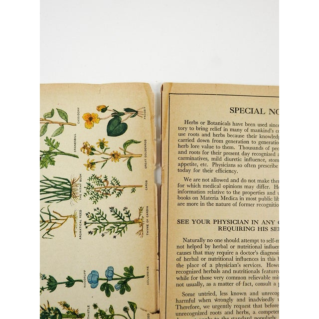 1947 The Herbalist Almanac For Sale - Image 5 of 7