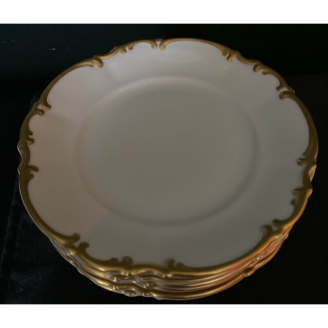 Vintage Hutschenreuther Brighton & Pasco Porcelain Bread & Butter Plates - Set of 12 For Sale - Image 13 of 13