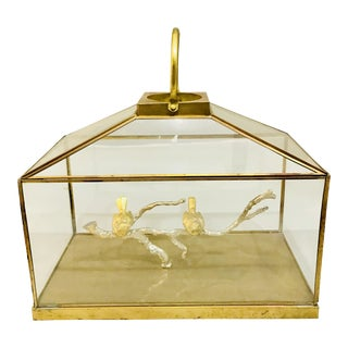 1960s Vintage Brass & Glass Bird Cage Display Box For Sale