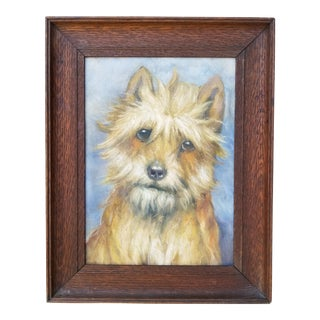 Portrait of a Cairn Terrier Dog For Sale