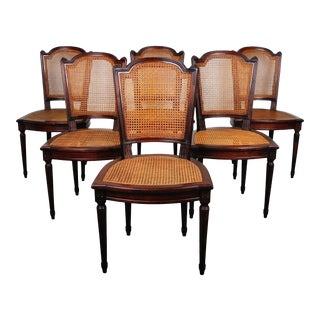 1930's Louis XVI French Mahogany Dining Chairs with Cane Seat and Back - Set of 6 For Sale