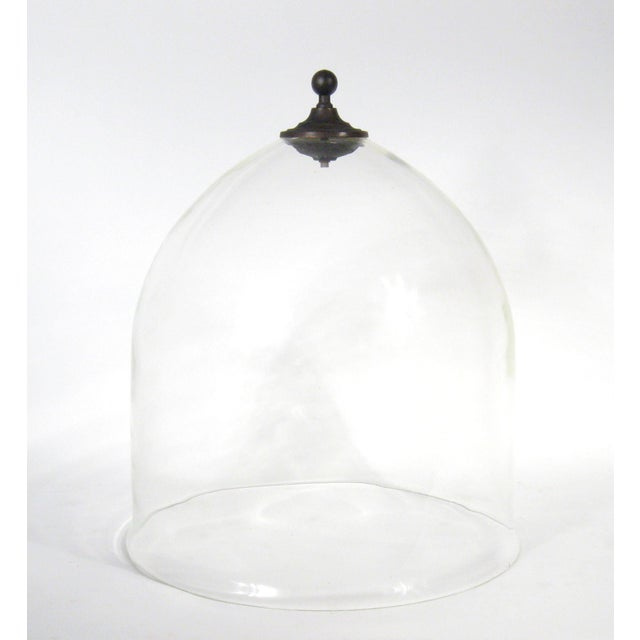 Modern Grand Garden Cloche For Sale - Image 3 of 6