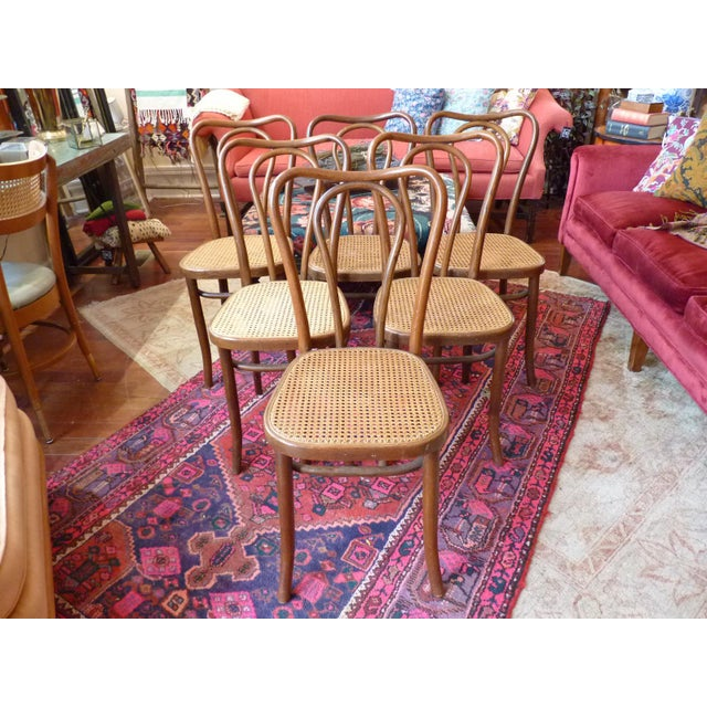 Set of 6 vintage bentwood cafe chairs in excellent condition. All chairs have in tact cane seats, except one seat has some...