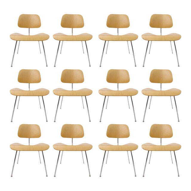 Many Charles Eames DCM Bent Plywood & Steel Chairs for Herman Miller White Ash For Sale
