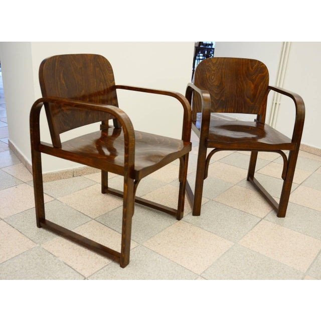 Czech beech & bentwood armchair from Tatra For Sale - Image 4 of 8