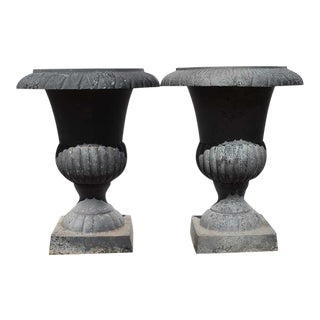 Gray Cast Iron Urn Planters - a Pair For Sale