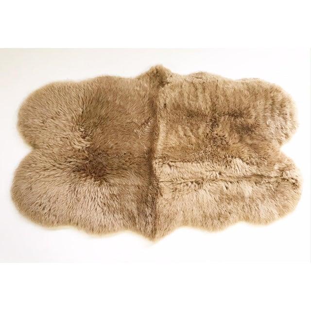 Forsyth Tan Quad Sheepskin Rug - 3′7″ × 6′ For Sale - Image 4 of 4