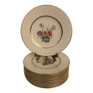 Vintage Botanical Accent Luncheon Plates Tatter of Trenton - Set of 12 For Sale