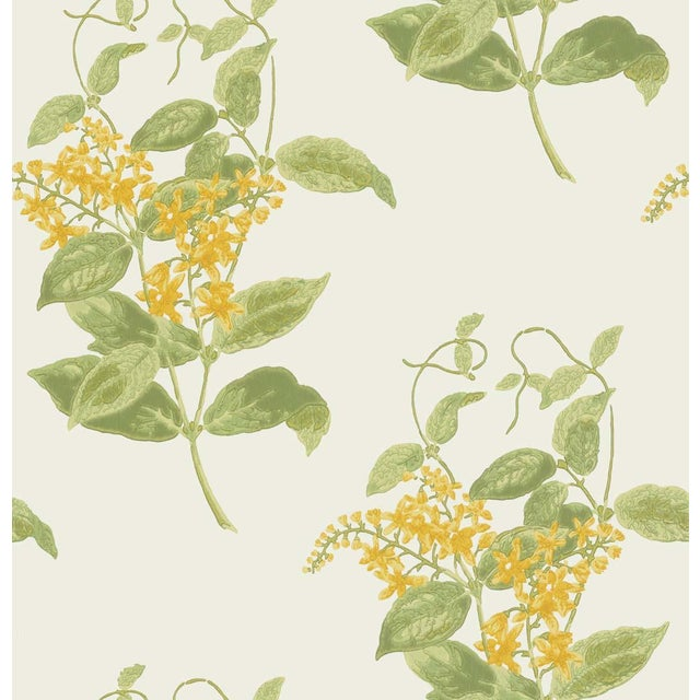 Cole & Son Madras Violet Classic Botanical Style Wallpaper - 11 Yard Roll For Sale - Image 4 of 5