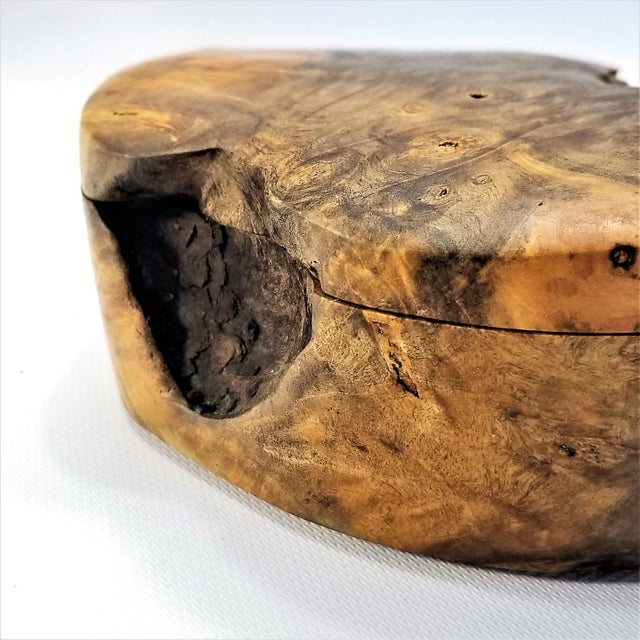 Gold Vintage Burl Wood Trinket Jewelry Box by Doug Muscanell - Signed - Organic Mid Century Modern Palm Beach Boho Chic Tree For Sale - Image 8 of 13