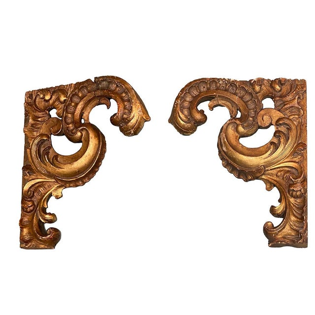 Gilt Carvings - a Pair For Sale In Dallas - Image 6 of 6