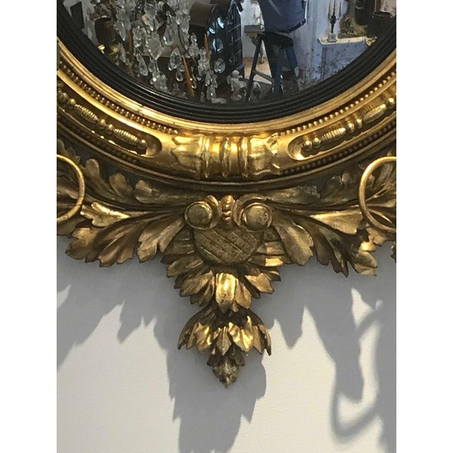 Early 19th Century Pair of 19th Century Regency Convex Mirror Girandoles With Hippocampus For Sale - Image 5 of 6