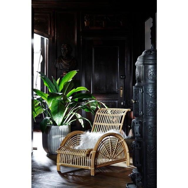 Arne Jacobsen Arne Jacobsen Paris Chair - Natural For Sale - Image 4 of 13