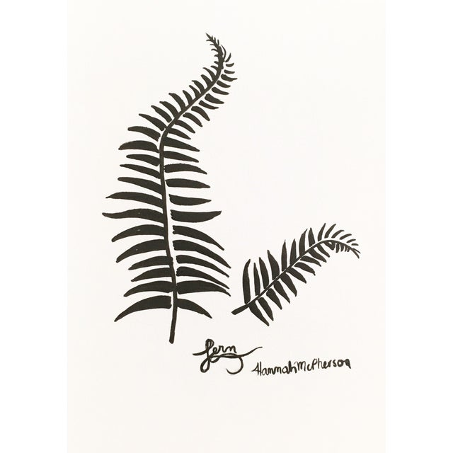2010s Fern Original Drawing by Hannah McPherson For Sale - Image 5 of 5