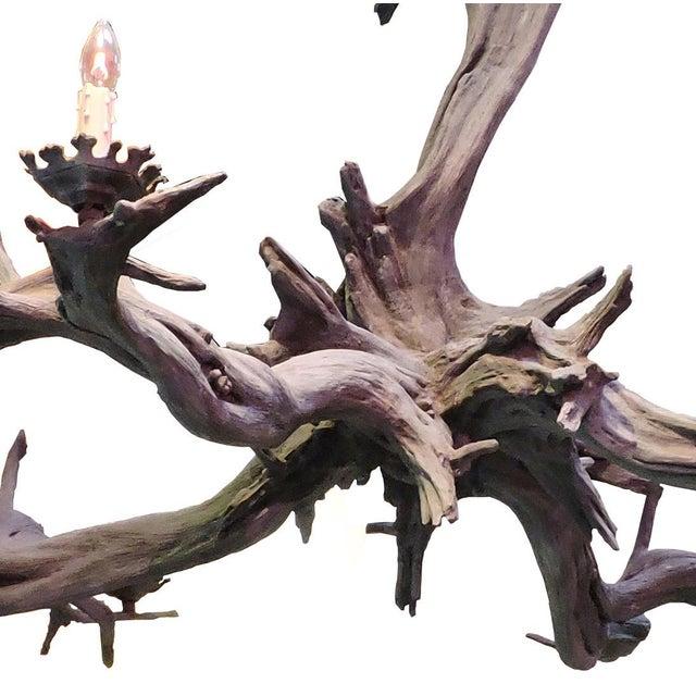 Bronze Driftwood Manzanita Chandelier - Image 2 of 6