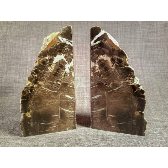 Petrified Wood Bookends - A Pair - Image 3 of 7
