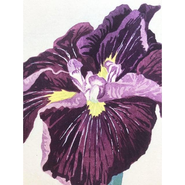 Printmaking Materials Japanese Iris Woodblock Botanical Print C.1900 For Sale - Image 7 of 9