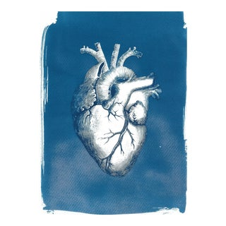 Heart Anatomy Vintage Illustration, Cyanotype on Watercolor Paper, Medical Art, Anatomical Heart, Love Gift, Gift for Her (Limited Edition) For Sale