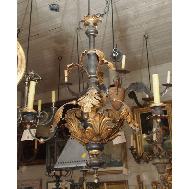 Early 19th century Exquisite 3 iron arms Italian chandelier. Stem is black painted wood . The thick metal acanthus leaves...