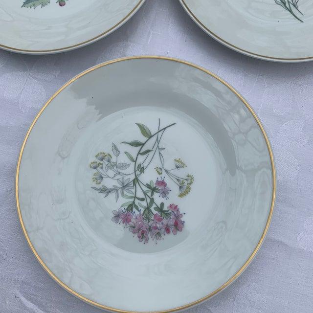 4 China salad plates. Gold rim. Wildflower Flower in middle. Richard Ginori Italy Primaveta