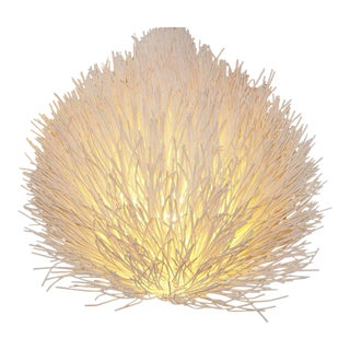 Organic Reed Accent Lamp