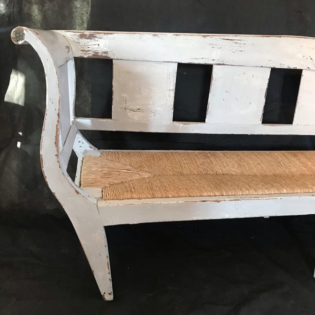 Gustavian (Swedish) Gustavian Grey Painted Rustic Bench With Original Rush Seat For Sale - Image 3 of 13
