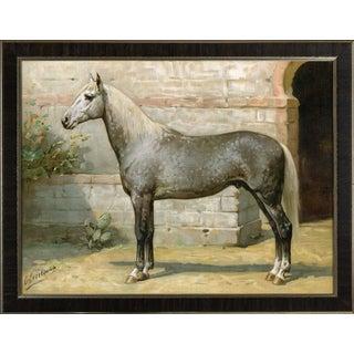 Algerian Horse by Eerelman Framed in Italian Wood Vener Moulding For Sale