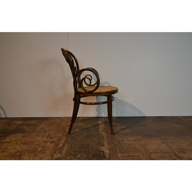 Boho Chic Pair of Bentwood Chairs For Sale - Image 3 of 5