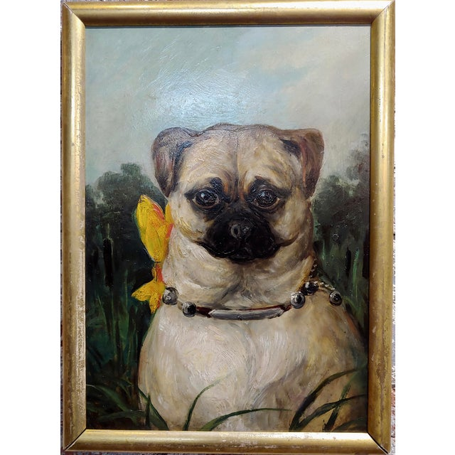 """Portrait of a Cute Pug -English School Oil painting Oil painting on board -circa 1930s frame size 14 x 18 board size 11 x 17"""""""
