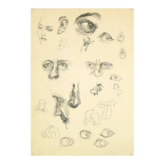 "Vintage Drawing ""Eyes, Ears & Noses,"" C. 1960"