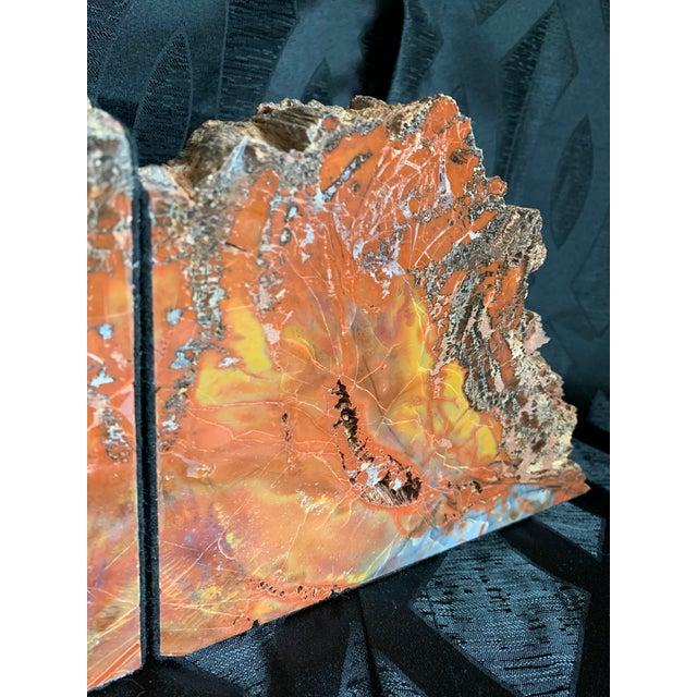 "Contemporary Gem Grade Petrified Wood Bookends Araucaria ""Arizona Rainbow Wood"" - a Pair For Sale - Image 3 of 12"