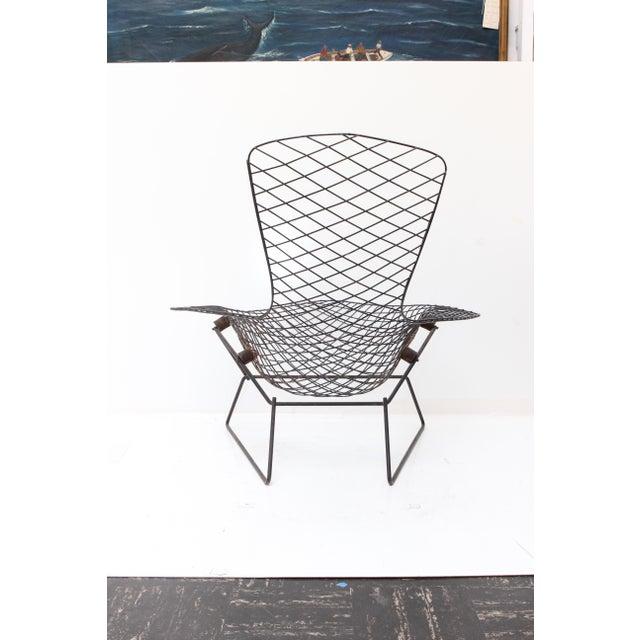 Knoll Bertoia Bird Chair - Image 4 of 11