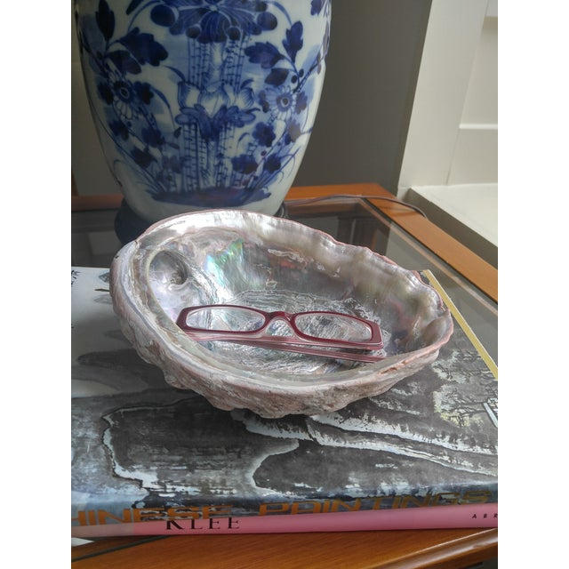 Red Abalone Shell Object For Sale - Image 9 of 9
