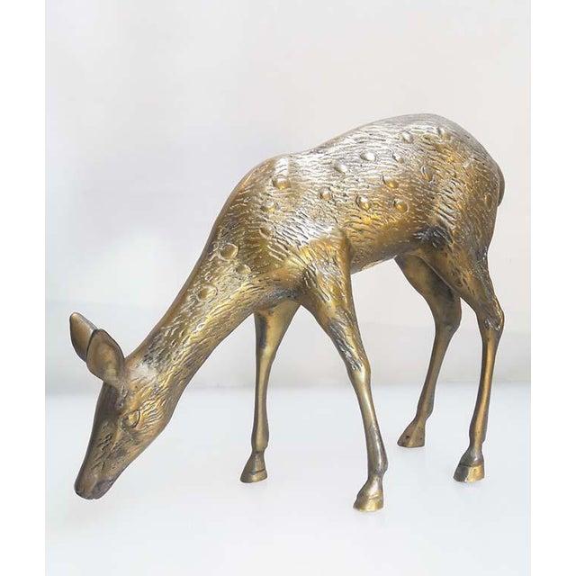 Large Vintage Brass Deers - A Pair - Image 5 of 6
