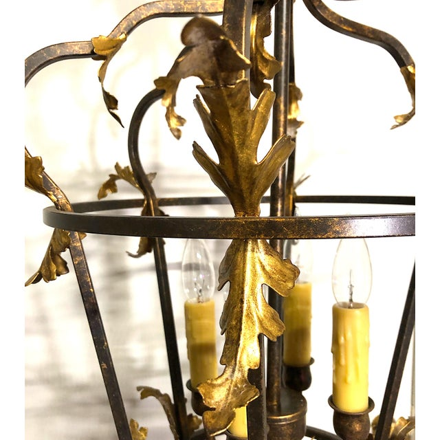 Black Late 20th Century Venetian Iron and Gilded Tole Foliate Hanging Lantern For Sale - Image 8 of 10