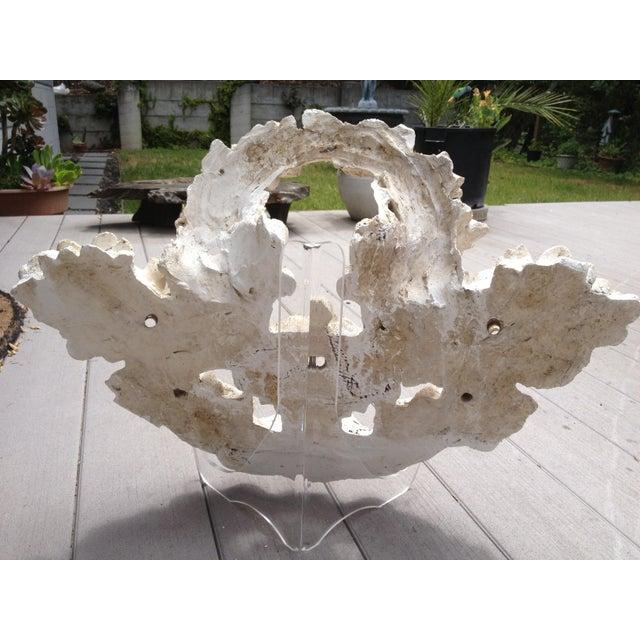 Vintage Carved Tufa Stone Floral Architectural Sculpture - Image 4 of 4