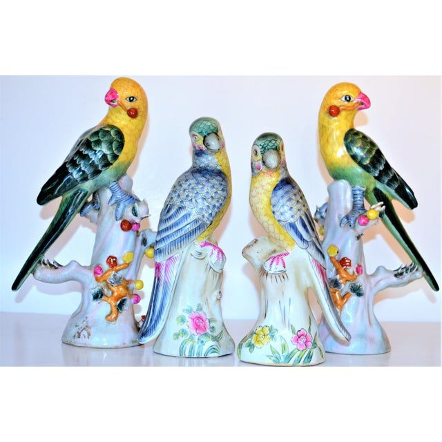 (Final Mark Down Taken) Chinese Export Porcelain Parrot Figurines - Set of 4 For Sale - Image 9 of 12