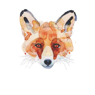 Fox Face, 9x12 Giclee Print For Sale