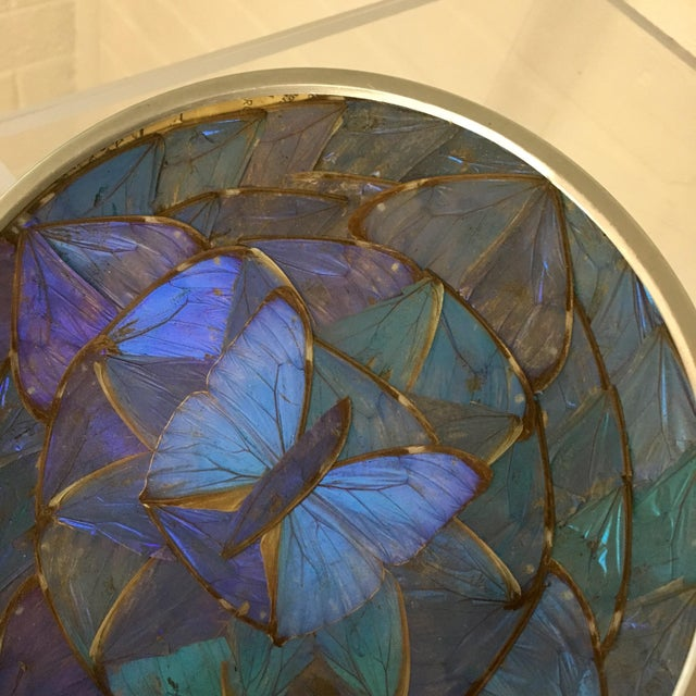 Art Deco Blue Morpho Butterfly Wing Art For Sale - Image 3 of 7