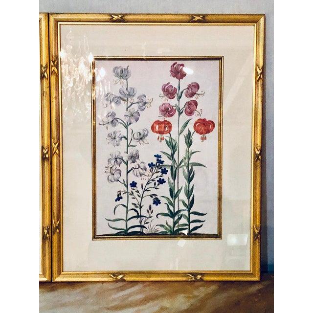 Pair of botanical chelsea house labels on reverse. Fine frames.