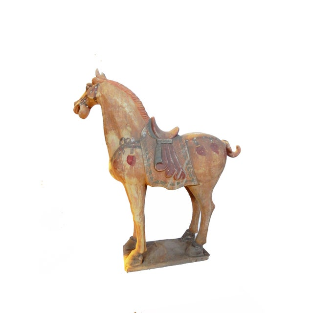 Lg Tang Dynasty-Style Standing Horses - a Pair - Image 3 of 8