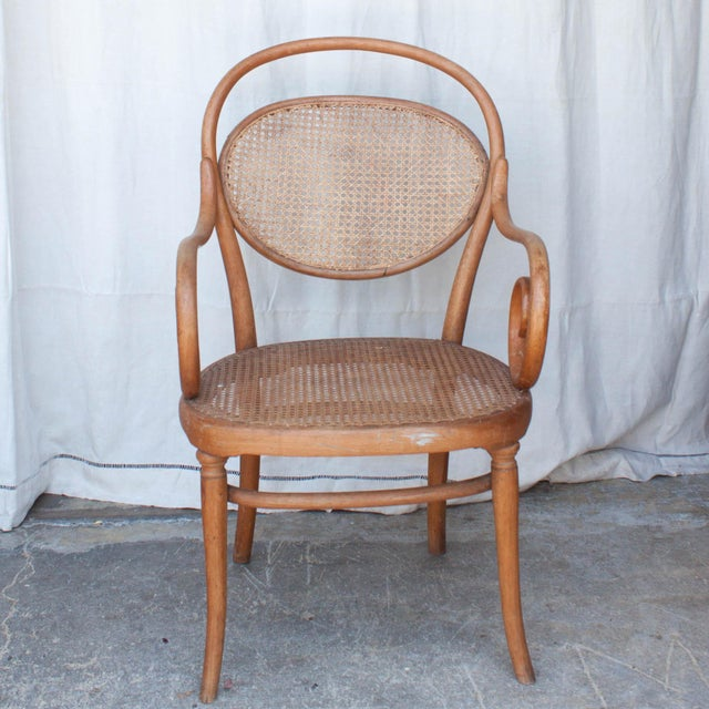 Vintage Thonet Arm Chair - Image 3 of 11