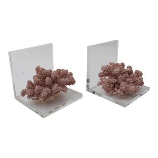 Mid Century Style Lucite and Mauve Sustainable Reef Bookends - a Pair For Sale