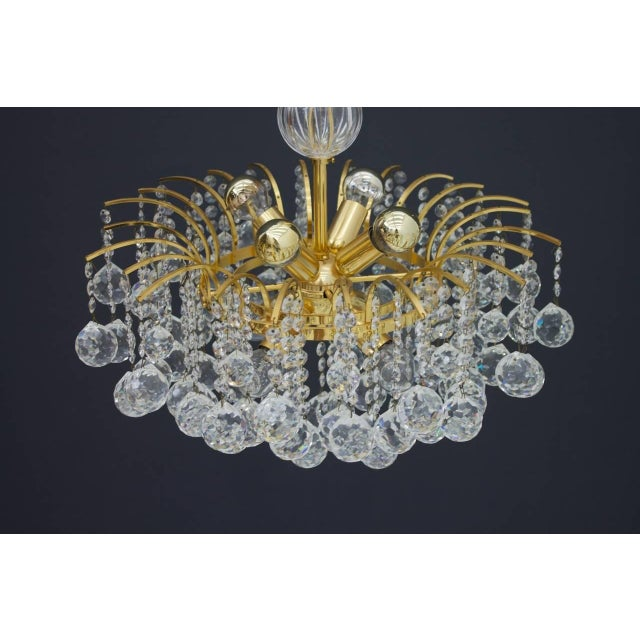 Christoph Palme Chandelier Gilded Brass and Crystal Glass For Sale - Image 13 of 13