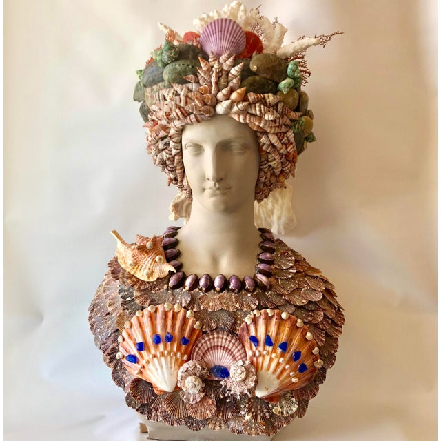 Early 21st Century Organic Renaissance Seashell Bust For Sale - Image 5 of 5