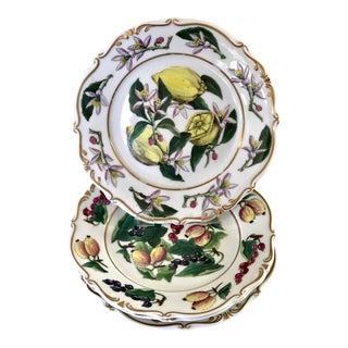 French Botanical Fruit and Nut Plates - Set of 4 For Sale